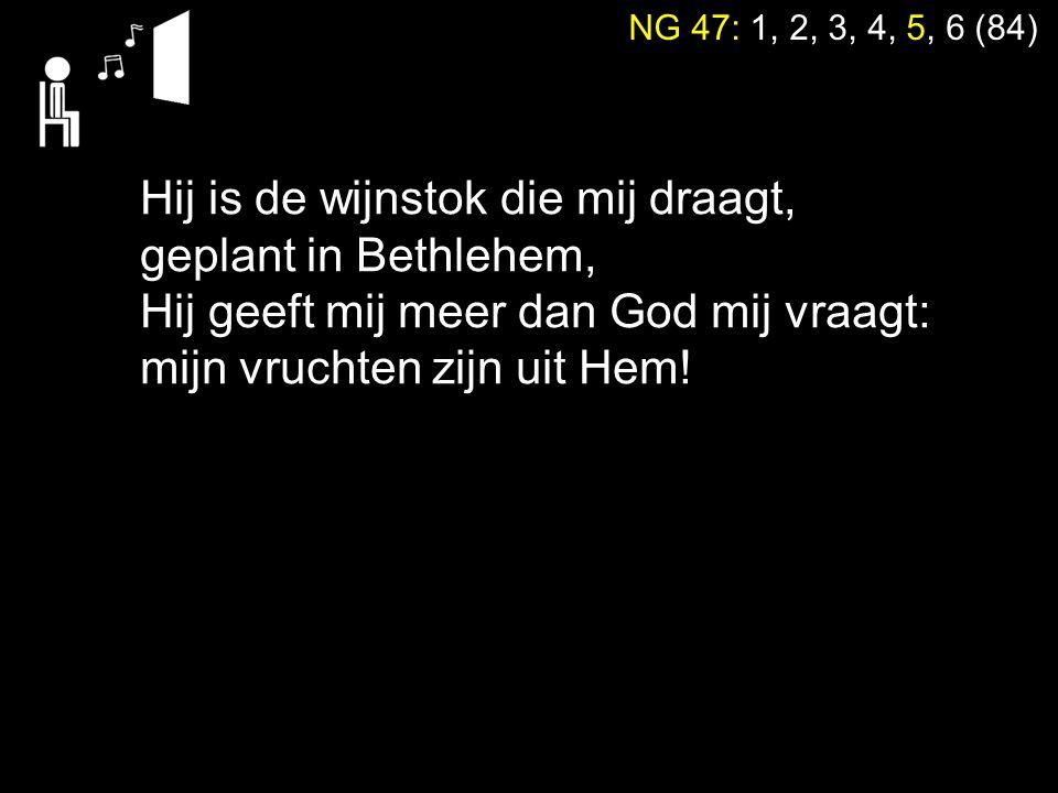 NG 47: 1, 2, 3, 4, 5, 6 (84) Hij is de wijnstok die mij draagt, geplant in Bethlehem, Hij geeft mij meer dan God mij vraagt: mijn vruchten zijn uit He