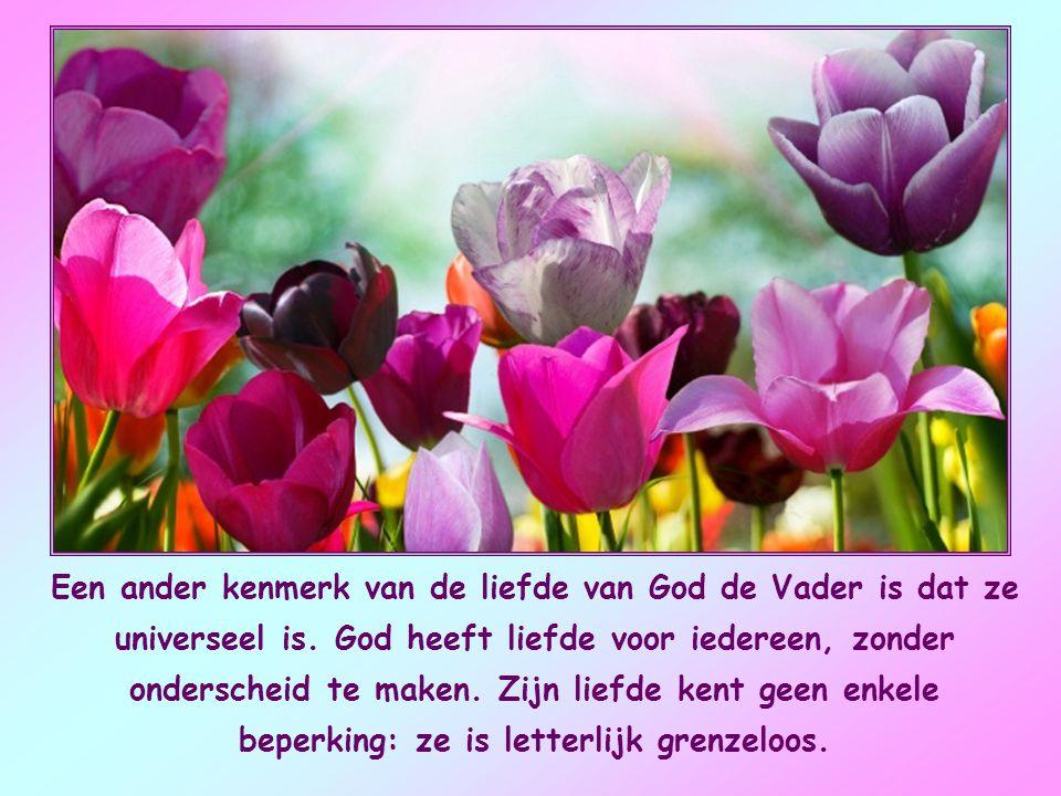 De hemelse Vader bemint ons niet omdat wij goed zijn, een mooie ziel hebben en daarom zijn aandacht en welwillendheid zouden verdienen. Integendeel, h