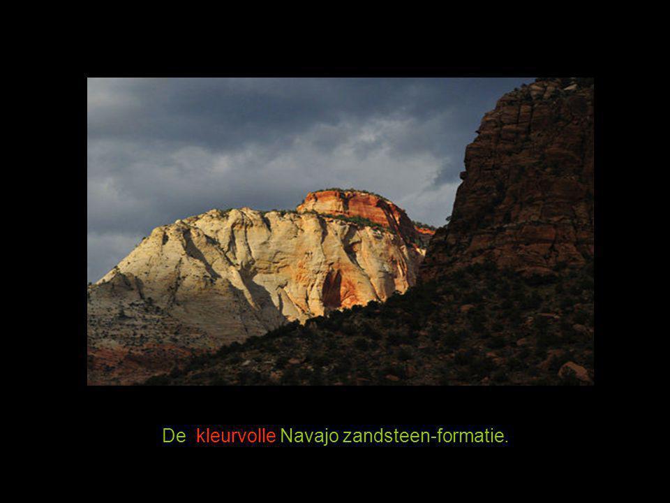 De kleurvolle Navajo zandsteen-formatie.