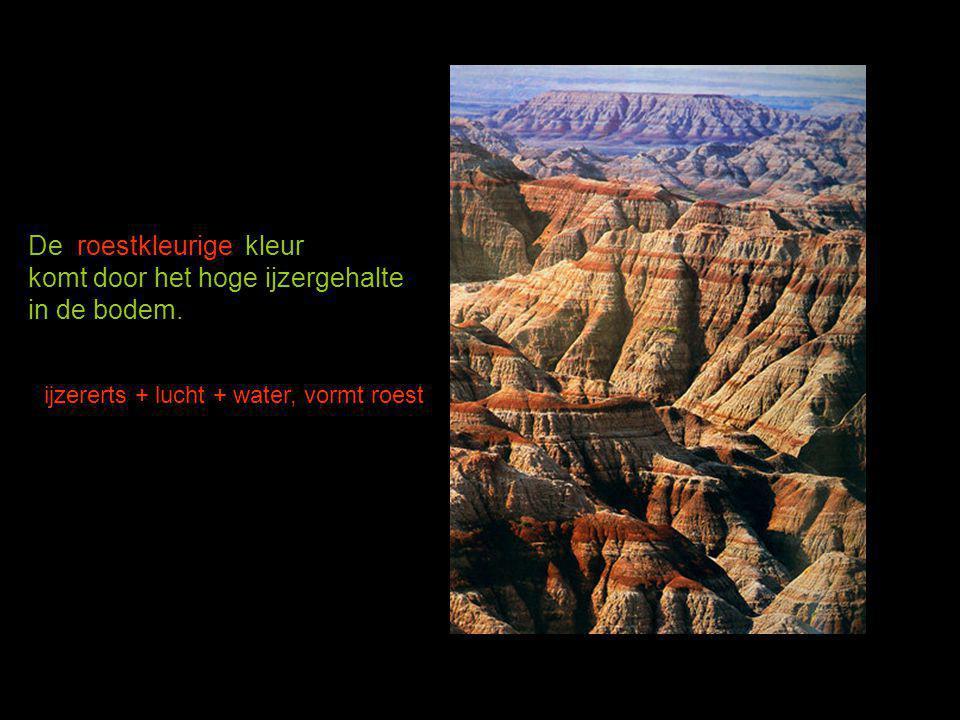 De roestkleurige kleur komt door het hoge ijzergehalte in de bodem.