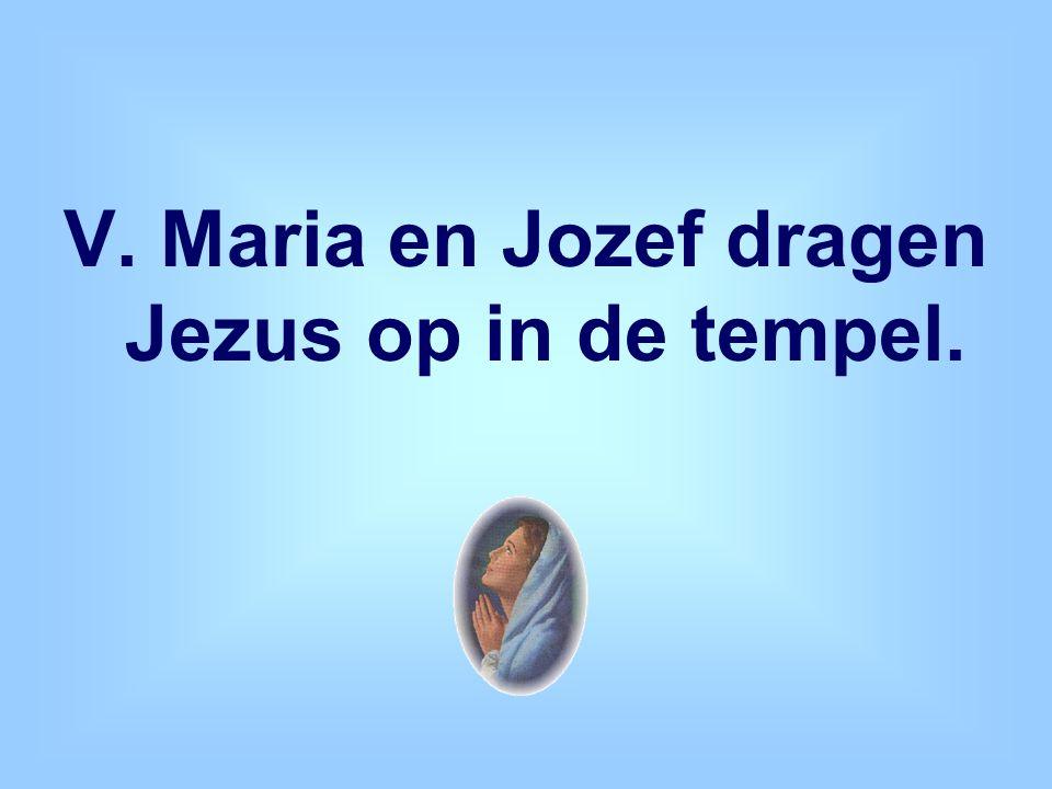 V. Maria en Jozef dragen Jezus op in de tempel.