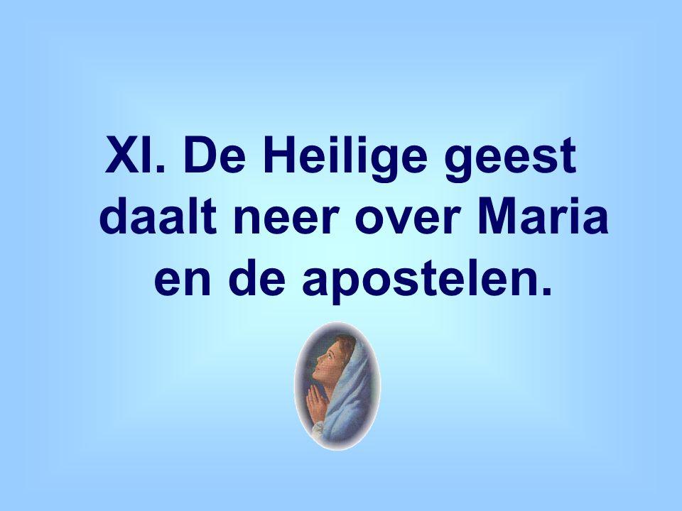 XI. De Heilige geest daalt neer over Maria en de apostelen.