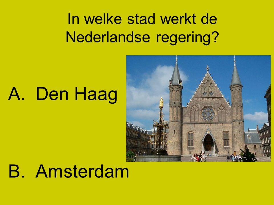 In welke stad werkt de Nederlandse regering? A.Den Haag B.Amsterdam