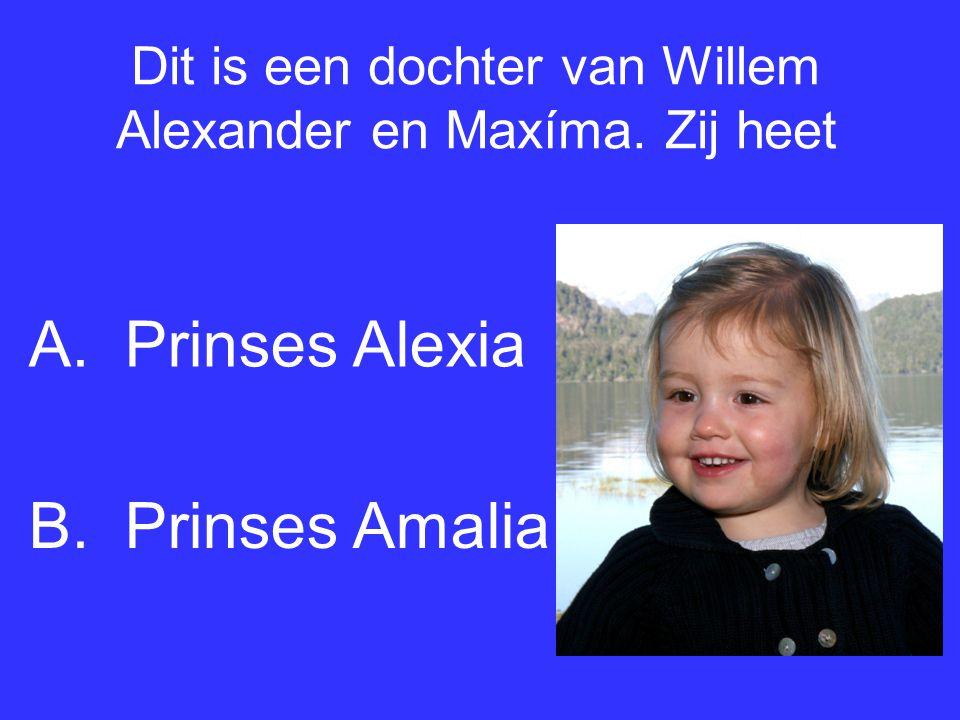 Dit is een dochter van Willem Alexander en Maxíma. Zij heet B.Prinses Amalia A.Prinses Alexia