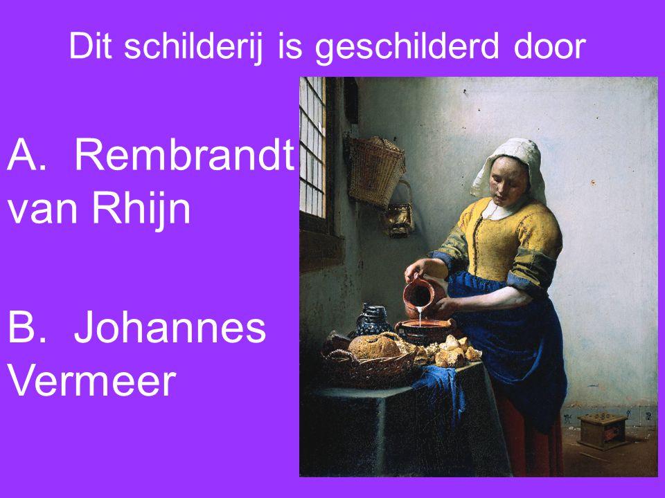 Dit schilderij is geschilderd door A. Rembrandt van Rhijn B. Johannes Vermeer