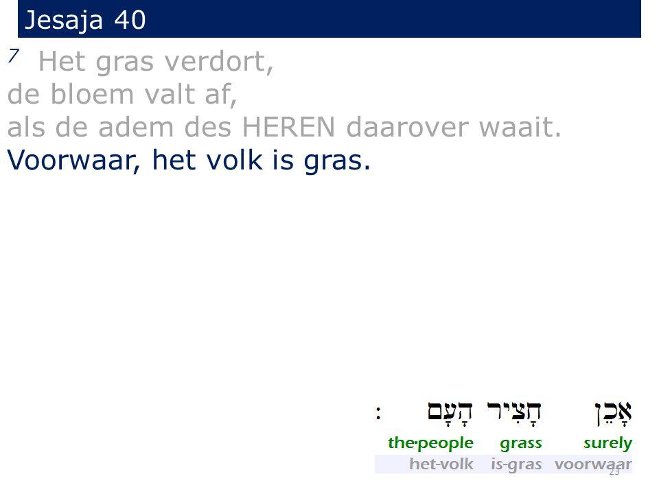 Jesaja 40 7 Het gras verdort, de bloem valt af, als de adem des HEREN daarover waait.