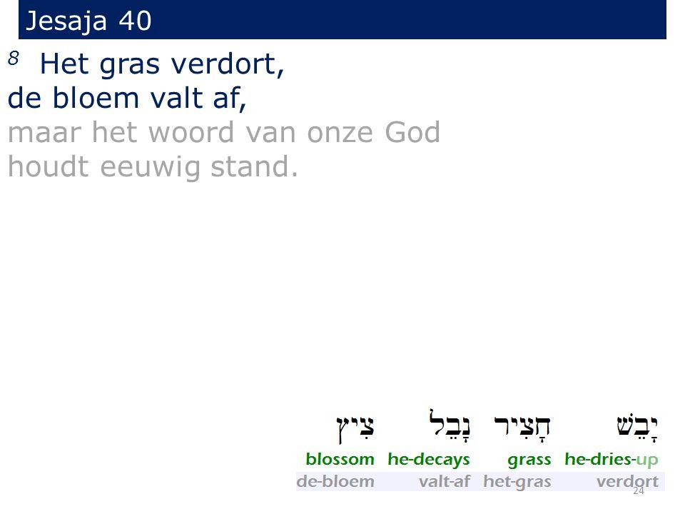 Jesaja 40 8 Het gras verdort, de bloem valt af, maar het woord van onze God houdt eeuwig stand. 24