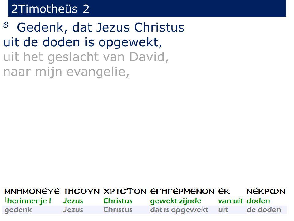 2Timotheüs 2 8 Gedenk, dat Jezus Christus uit de doden is opgewekt, uit het geslacht van David, naar mijn evangelie, 26