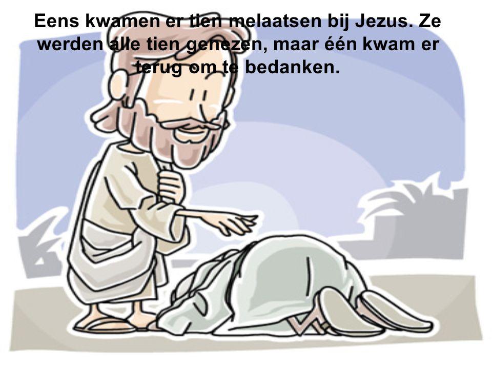 Eens kwamen er tien melaatsen bij Jezus. Ze werden alle tien genezen, maar één kwam er terug om te bedanken.