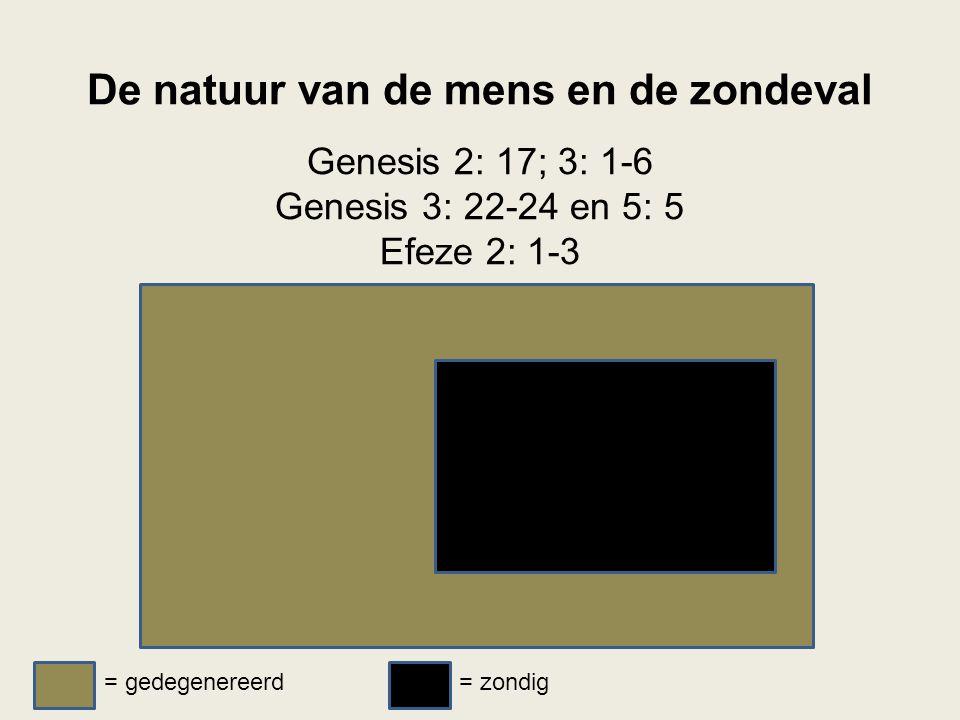 De natuur van de mens en de zondeval Genesis 2: 17; 3: 1-6 Genesis 3: 22-24 en 5: 5 Efeze 2: 1-3 = gedegenereerd= zondig