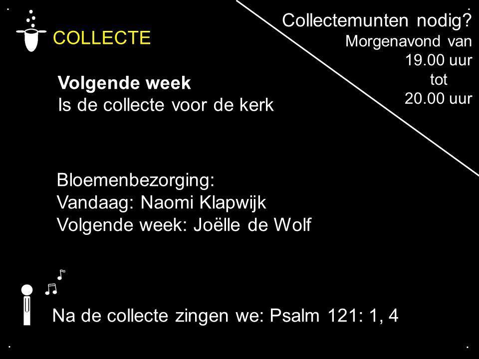 .... COLLECTE Volgende week Is de collecte voor de kerk Bloemenbezorging: Vandaag: Naomi Klapwijk Volgende week: Joëlle de Wolf Collectemunten nodig?