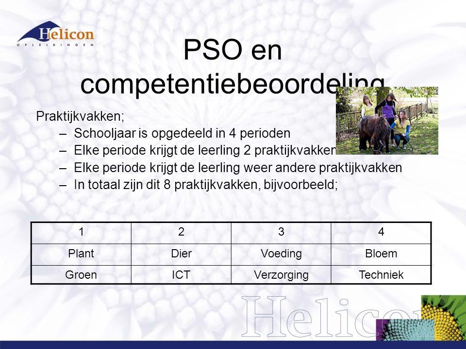 PSO en competentiebeoordeling Praktijkvakken; –Schooljaar is opgedeeld in 4 perioden –Elke periode krijgt de leerling 2 praktijkvakken –Elke periode k