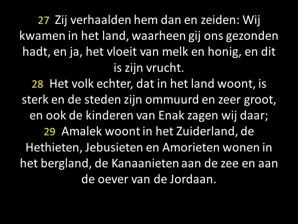 27 Zij verhaalden hem dan en zeiden: Wij kwamen in het land, waarheen gij ons gezonden hadt, en ja, het vloeit van melk en honig, en dit is zijn vrucht.