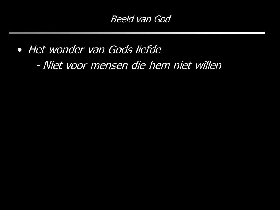 Beeld van God Het wonder van Gods liefde -Niet voor mensen die hem niet willen