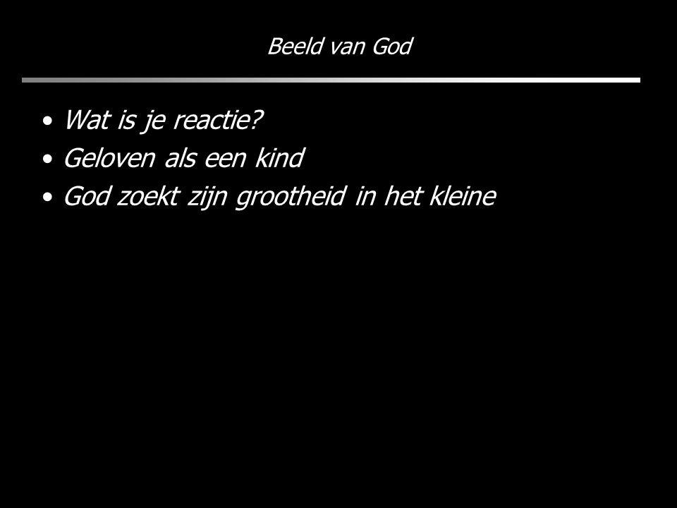 Beeld van God Wat is je reactie? Geloven als een kind God zoekt zijn grootheid in het kleine