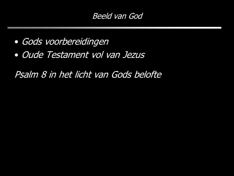 Beeld van God Gods voorbereidingen Oude Testament vol van Jezus Psalm 8 in het licht van Gods belofte