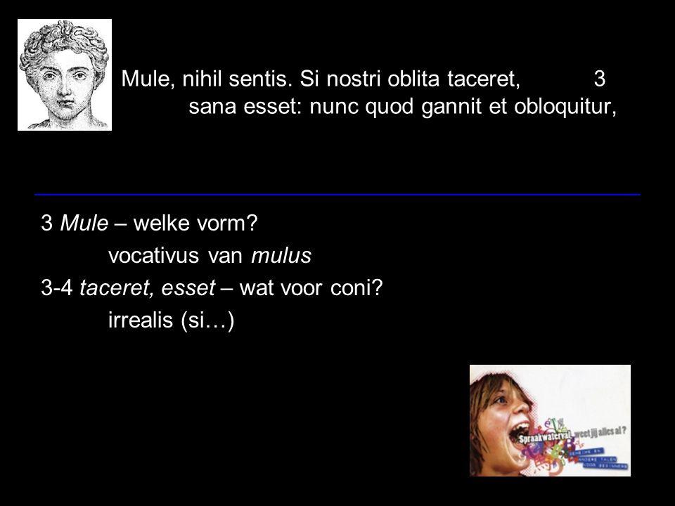 Mule, nihil sentis. Si nostri oblita taceret,3 sana esset: nunc quod gannit et obloquitur, 3 Mule – welke vorm? vocativus van mulus 3-4 taceret, esset