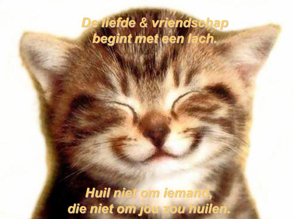 De liefde & vriendschap begint met een lach. Huil niet om iemand, die niet om jou zou huilen.