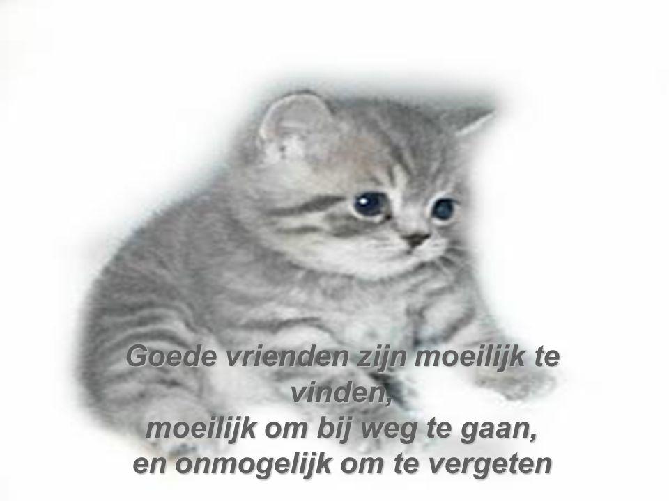 Wat doe je als de enige persoon die je kan laten stoppen met huilen de persoon is die je zelf heeft laten huilen