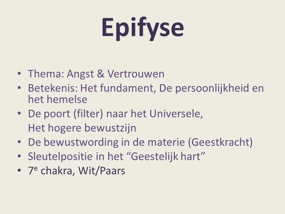 Epifyse Thema: Angst & Vertrouwen Betekenis: Het fundament, De persoonlijkheid en het hemelse De poort (filter) naar het Universele, Het hogere bewust