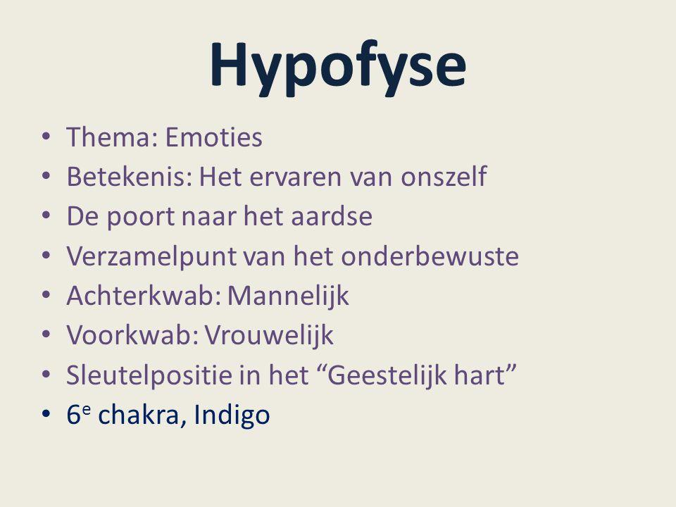 Hypofyse Thema: Emoties Betekenis: Het ervaren van onszelf De poort naar het aardse Verzamelpunt van het onderbewuste Achterkwab: Mannelijk Voorkwab: