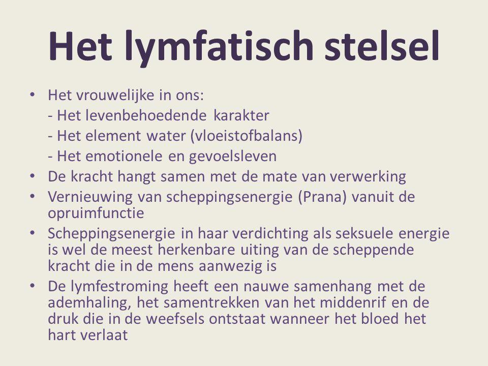 Het lymfatisch stelsel Het vrouwelijke in ons: - Het levenbehoedende karakter - Het element water (vloeistofbalans) - Het emotionele en gevoelsleven D