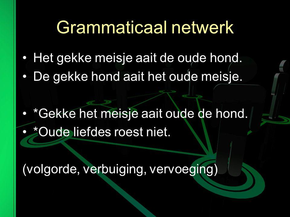 Grammaticaal netwerk Het gekke meisje aait de oude hond.