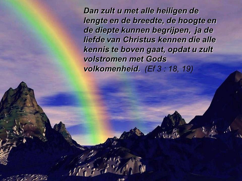 Zolang u zelf nog niet het volle Licht kunt zien, hebt u uw medechristen als medeleerling nodig om Gods Licht en Liefde dieper te leren kennen.