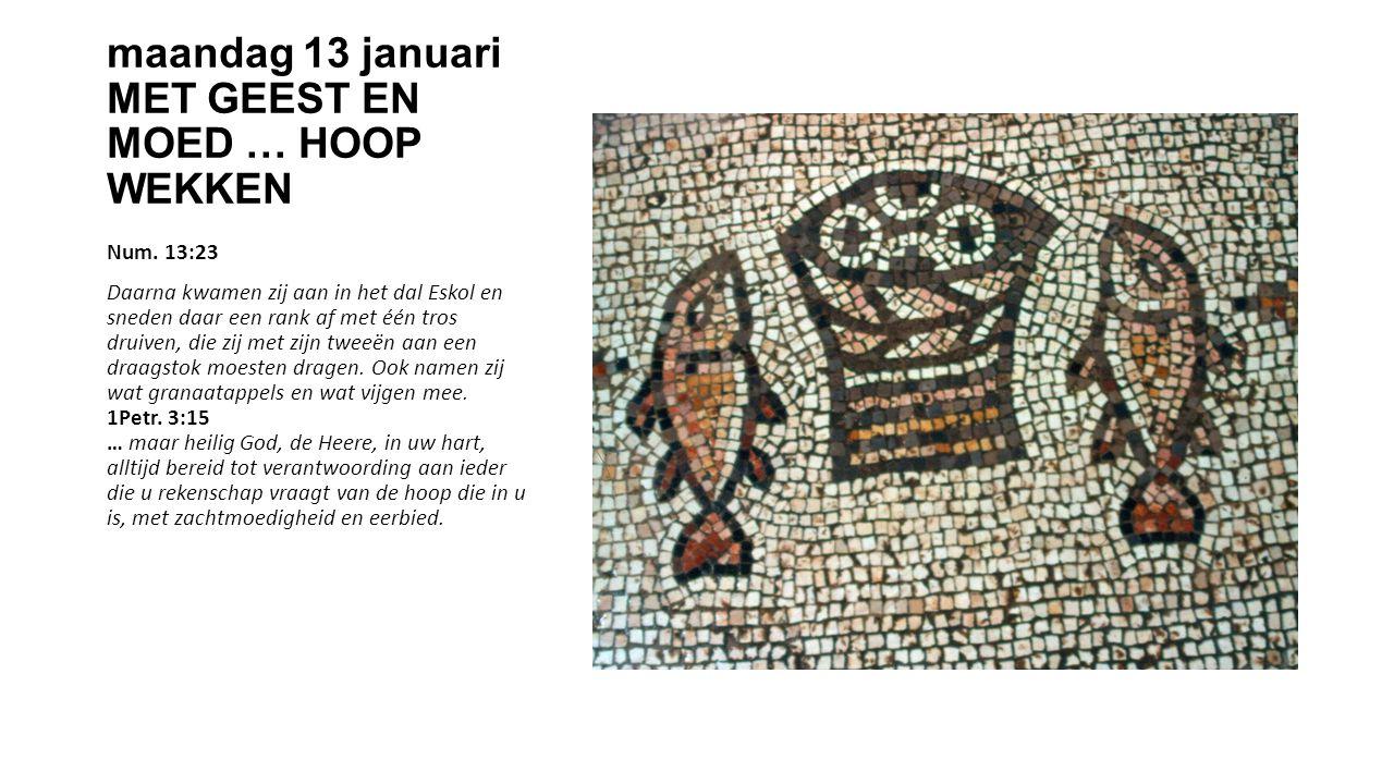 maandag 13 januari MET GEEST EN MOED … HOOP WEKKEN Num.