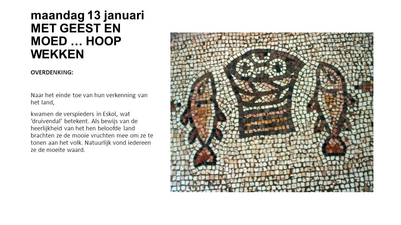 maandag 13 januari MET GEEST EN MOED … HOOP WEKKEN OVERDENKING: Naar het einde toe van hun verkenning van het land, kwamen de verspieders in Eskol, wat 'druivendal' betekent.