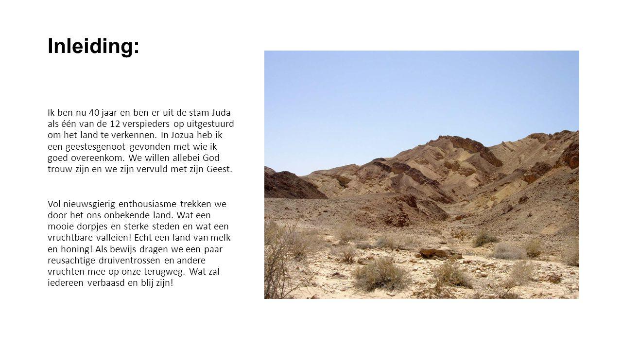 zondag 19 januari MET GEEST EN MOED … VASTHOUDEN AAN DE BELOFTE Deut.