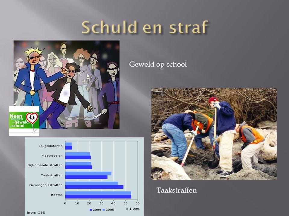 Geweld op school Taakstraffen
