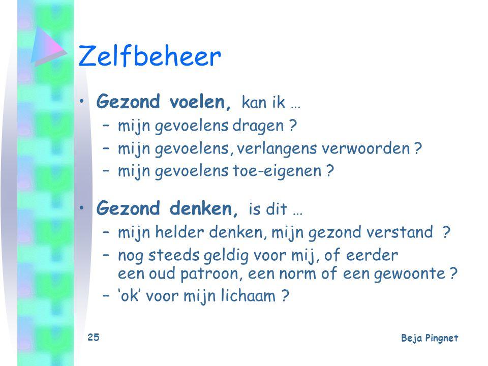 Beja Pingnet 26 Zelfbeheer - Keuze Probleem of Uitdaging .