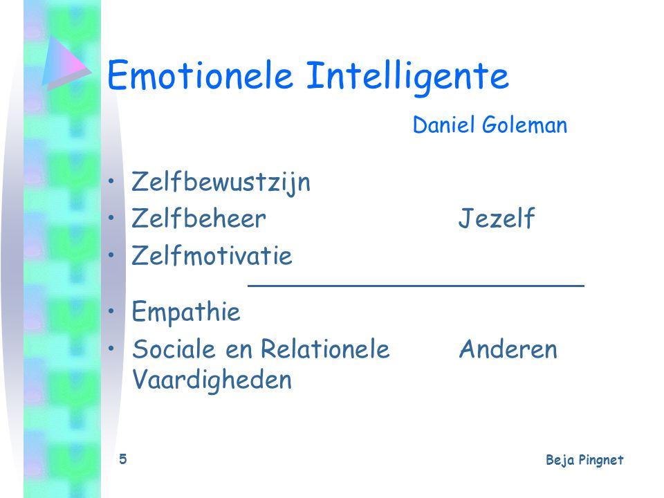Beja Pingnet 5 Emotionele Intelligente Daniel Goleman Zelfbewustzijn ZelfbeheerJezelf Zelfmotivatie Empathie Sociale en Relationele Anderen Vaardighed