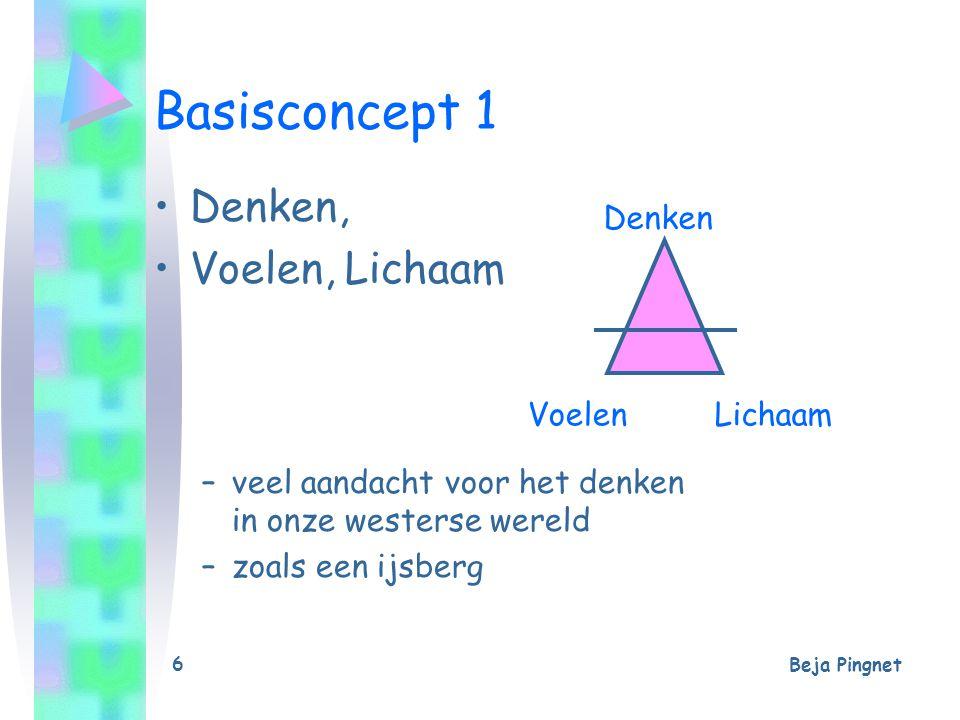 Beja Pingnet 6 Basisconcept 1 Denken, Voelen, Lichaam –veel aandacht voor het denken in onze westerse wereld –zoals een ijsberg Denken VoelenLichaam