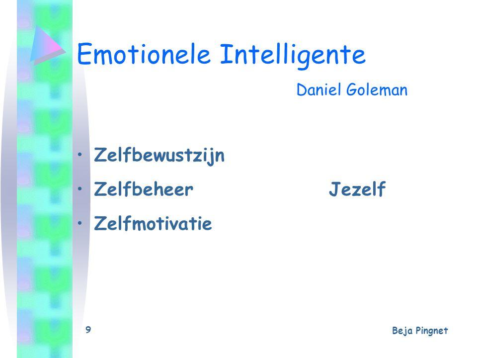 Beja Pingnet 9 Emotionele Intelligente Daniel Goleman Zelfbewustzijn ZelfbeheerJezelf Zelfmotivatie