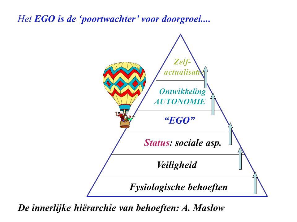 Fysiologische behoeften Veiligheid Status: sociale asp.