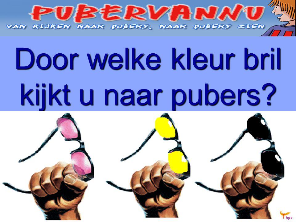 Door welke kleur bril kijkt u naar pubers