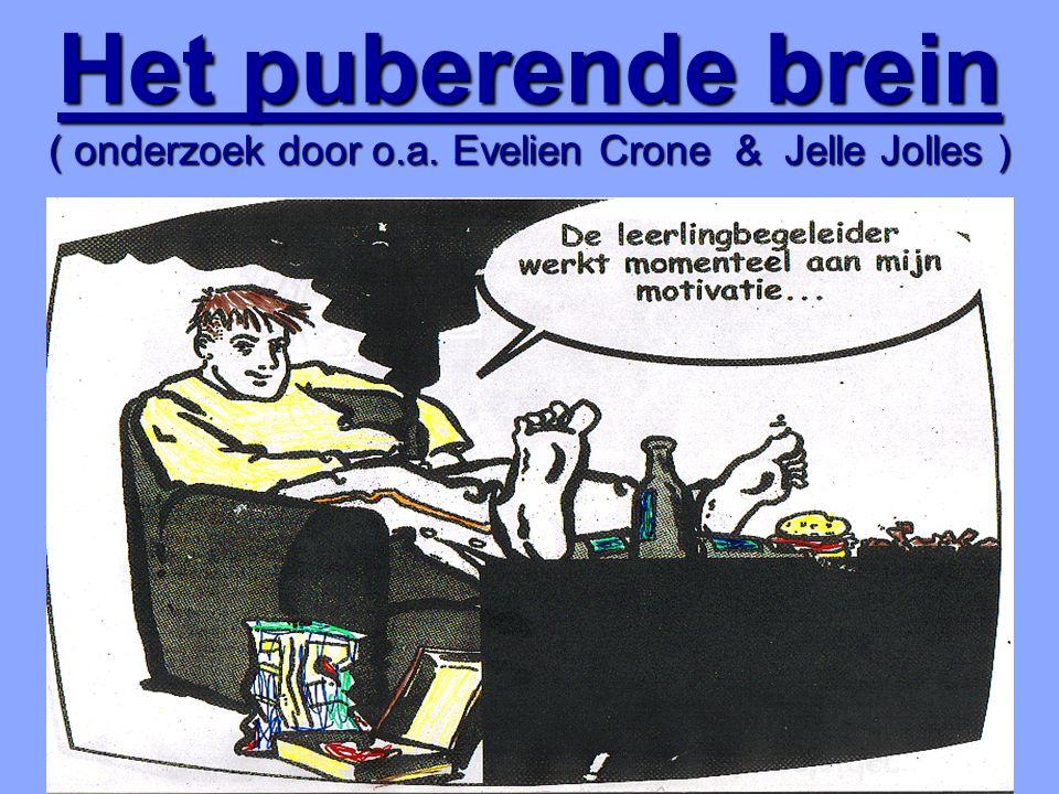 Het puberende brein ( onderzoek door o.a. Evelien Crone & Jelle Jolles )