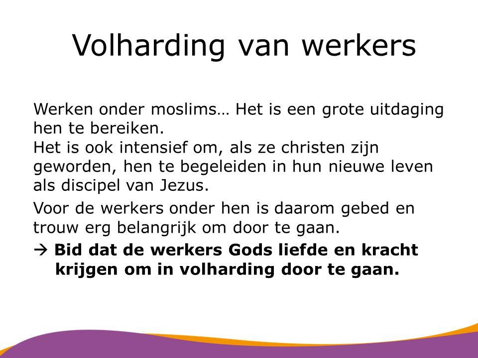 Jongerenkampen van Gave Tijdens de jongerenkampen van Gave komen Nederlandse en asielzoekersjongeren bij elkaar.