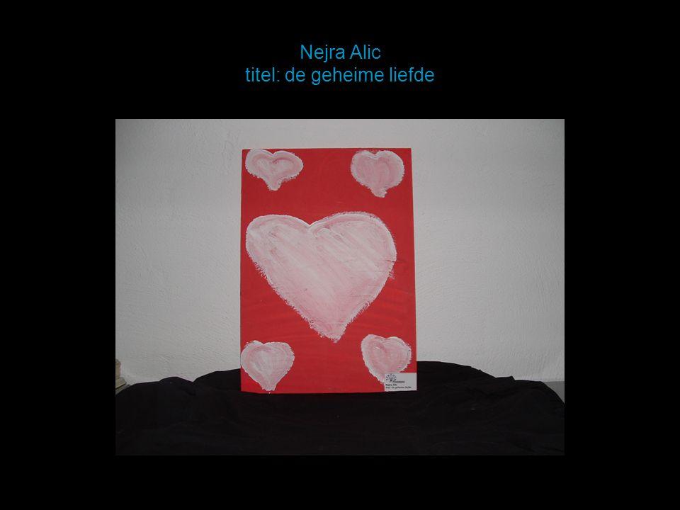 Nejra Alic titel: de geheime liefde
