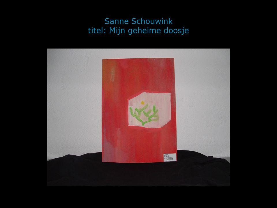 Sanne Schouwink titel: Mijn geheime doosje