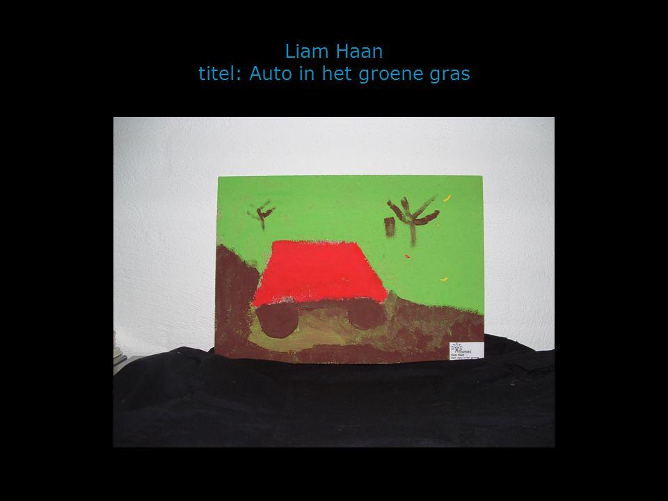 Liam Haan titel: Auto in het groene gras