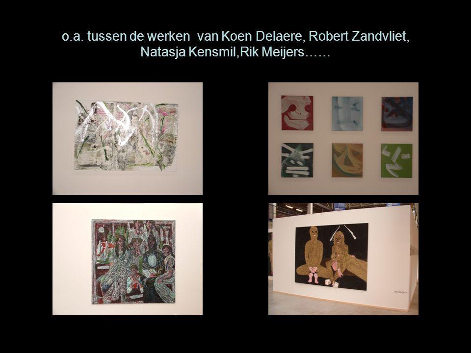 o.a. tussen de werken van Koen Delaere, Robert Zandvliet, Natasja Kensmil,Rik Meijers……