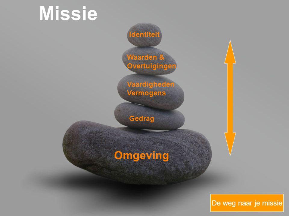 your name Omgeving Missie Gedrag Vaardigheden Vermogens Waarden & Overtuigingen Identiteit De weg naar je missie