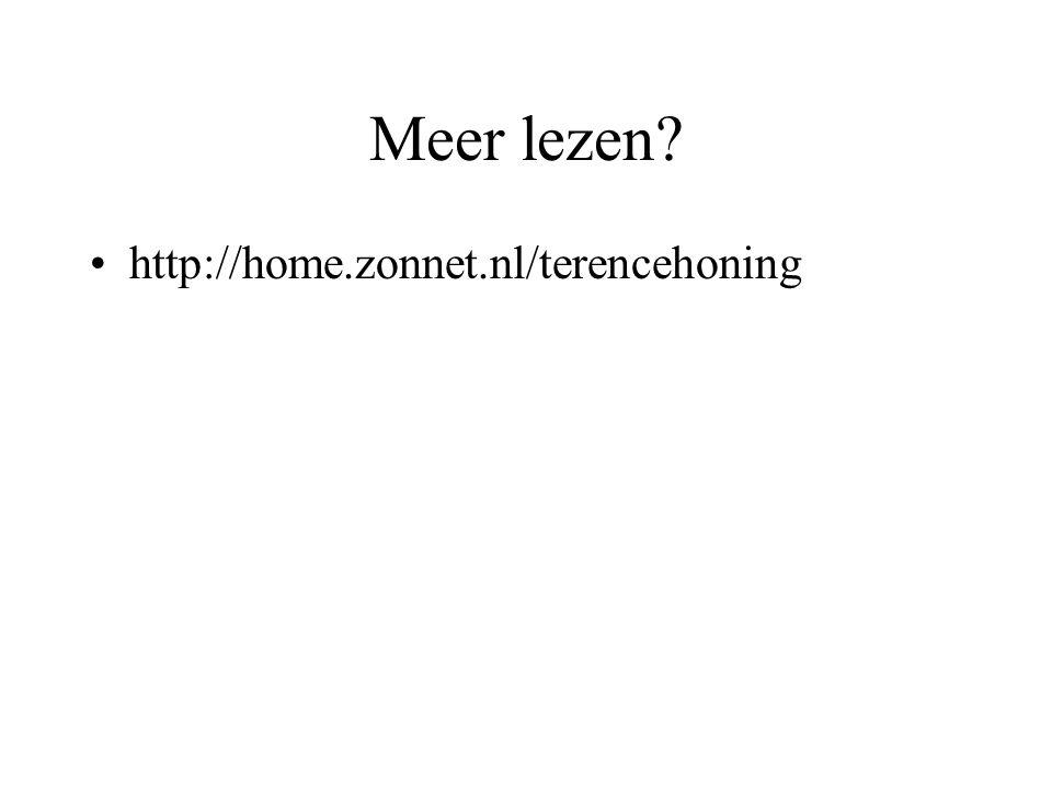 Meer lezen? http://home.zonnet.nl/terencehoning
