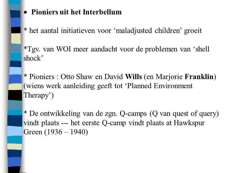  Pioniers uit het Interbellum * het aantal initiatieven voor 'maladjusted children' groeit *Tgv. van WOI meer aandacht voor de problemen van 'shell
