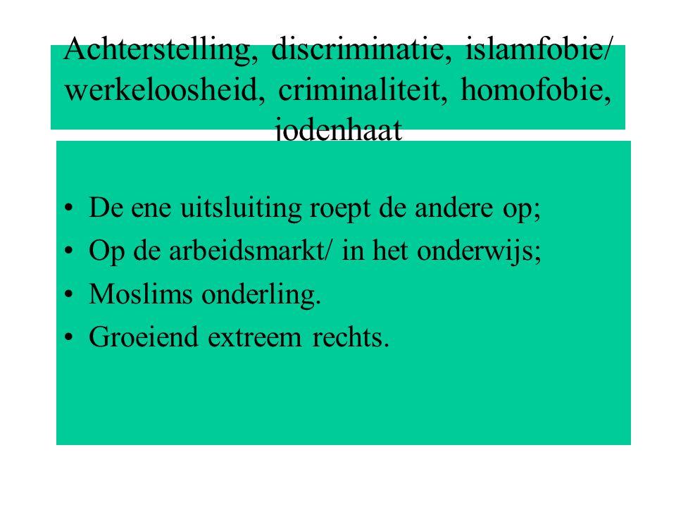 Achterstelling, discriminatie, islamfobie/ werkeloosheid, criminaliteit, homofobie, jodenhaat De ene uitsluiting roept de andere op; Op de arbeidsmarkt/ in het onderwijs; Moslims onderling.