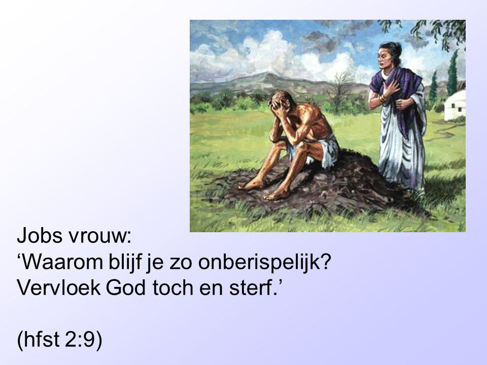 Jobs vrouw: 'Waarom blijf je zo onberispelijk? Vervloek God toch en sterf.' (hfst 2:9)
