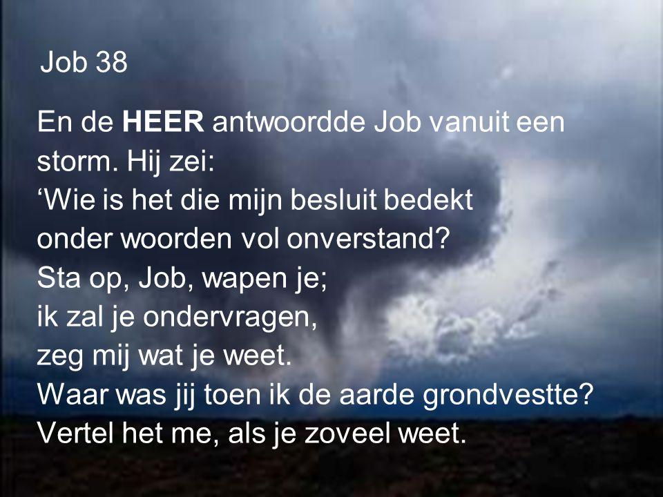 Job 38 En de HEER antwoordde Job vanuit een storm.